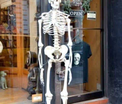 骨粗鬆症は自分で防げる?女性ホルモンとカルシウムの関係