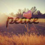 暴力やストレスのない平和な社会を。アートオブリビングヨガとはどんなヨガ?