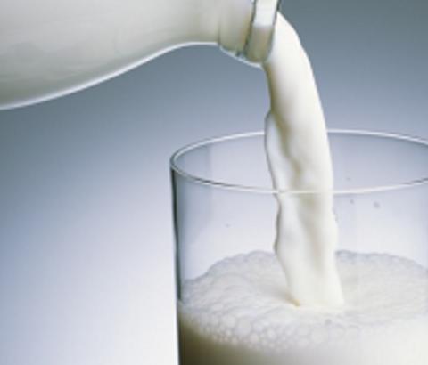 バストアップに向いているのは、牛乳or豆乳?どっちがいいのか徹底解剖!