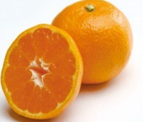食事前にみかんダイエット!酵素も摂れる果物ダイエットの方法