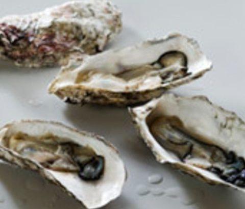 牡蠣でダイエットする方法とは?食事でタンパク質を摂りつつ肉、魚ダイエット