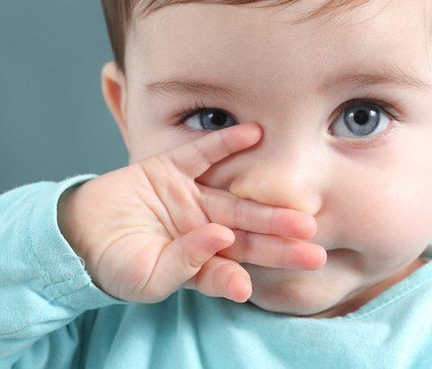 鼻水がとまらない!花粉症や鼻炎の悩みには「ごぼう」が効果的♪