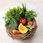 ビタミンB群がニキビを予防!食生活と栄養の大切さを知ろう