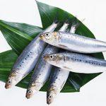 生理不順を青魚で改善しよう!食べ物でとる不調対策