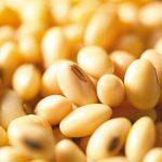 大豆でワキガ・多汗症ケア!食生活から見直す臭い対策