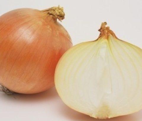 毎日摂れる根菜、たまねぎでバストアップ!食べ物で胸ケアする方法とレシピ